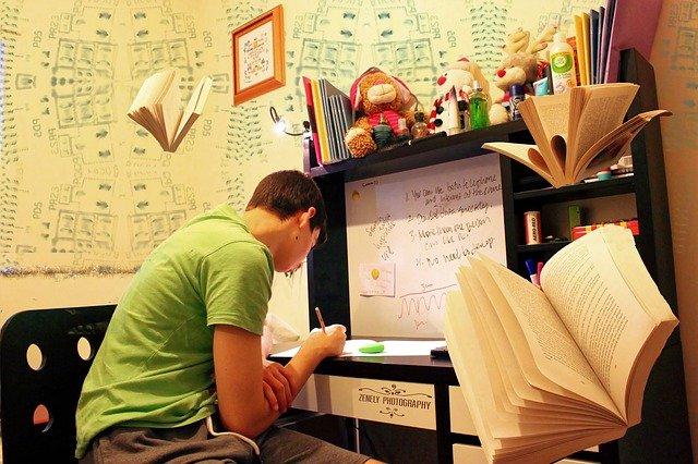 Teenage male studying